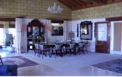 Magnificent house for rent in Larnaca