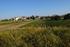 For Sale land in Limassol - properties in Cyprus