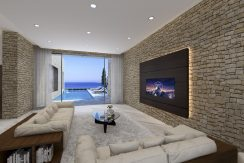 Luxury sea front Villa in Paphos - properties in Cyprus