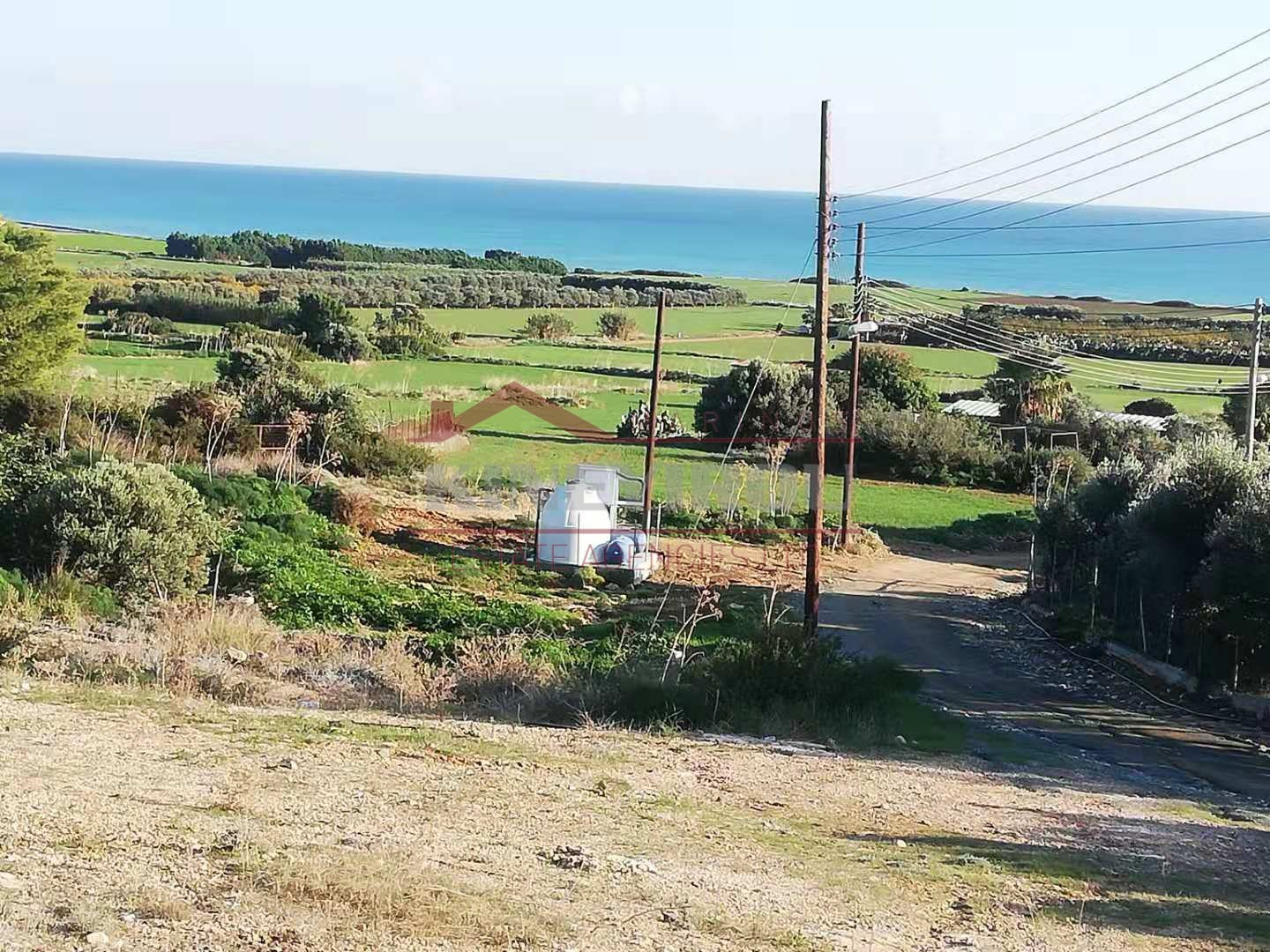 Land For Sale in Agios Theodoros- Larnaca.