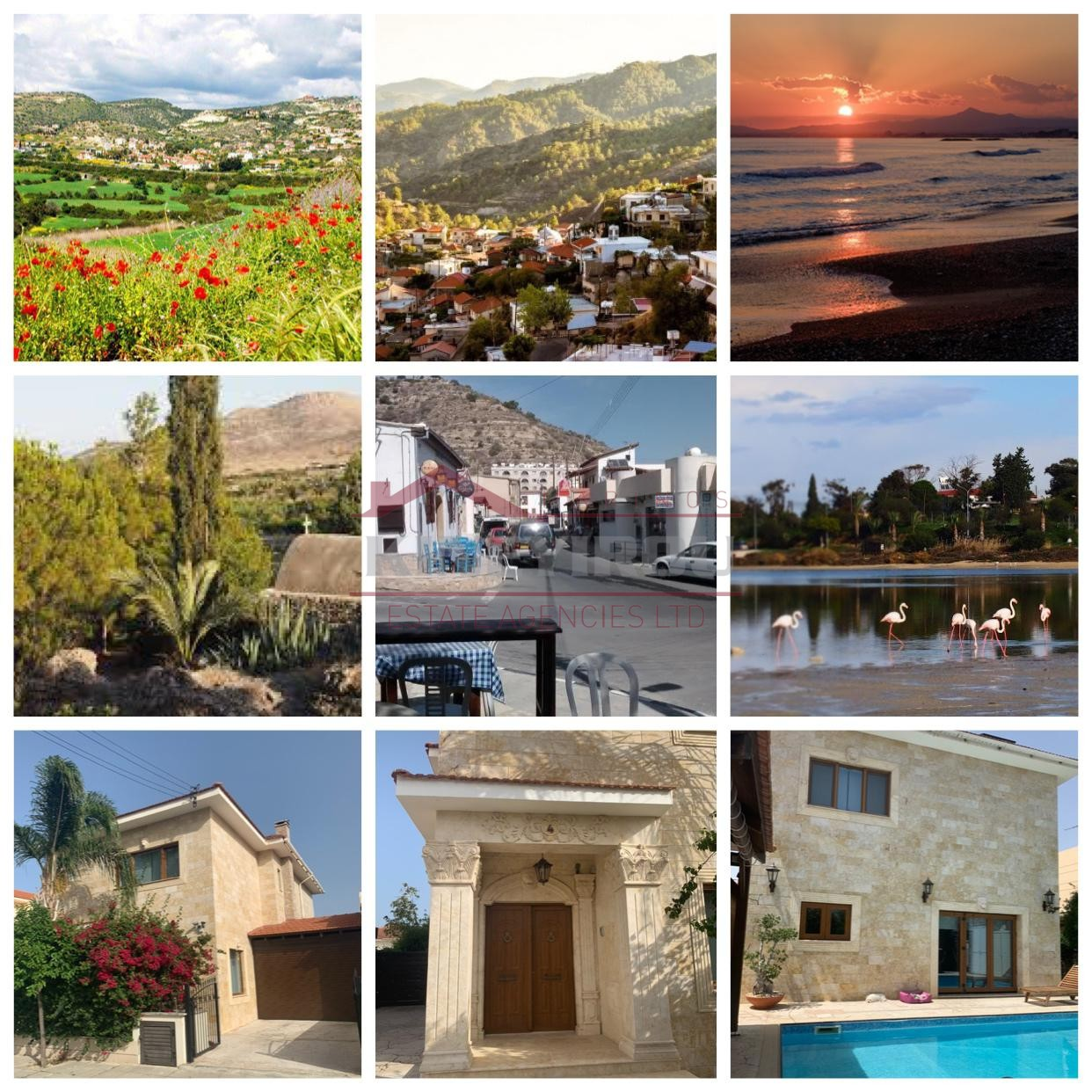 Villa For Rent in Oroklini, Larnaca