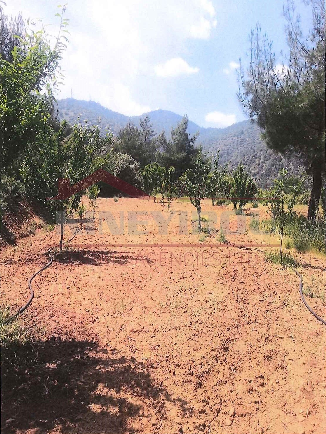 Larnaca Property , House in Vavatsinia for sale