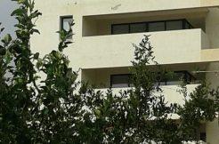 Rented Apartment in Center