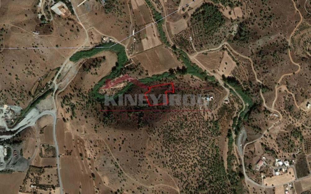 Field in Psevdas, Larnaca