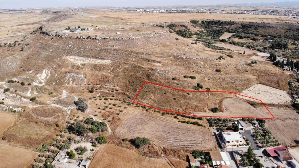 Field in Mammari, Nicosia