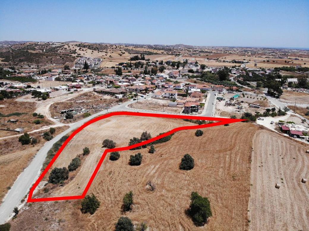 Field in Alaminos, Larnaca