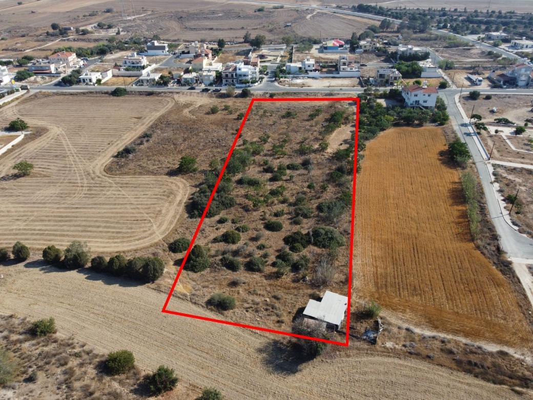 Field in Ormideia, Larnaca