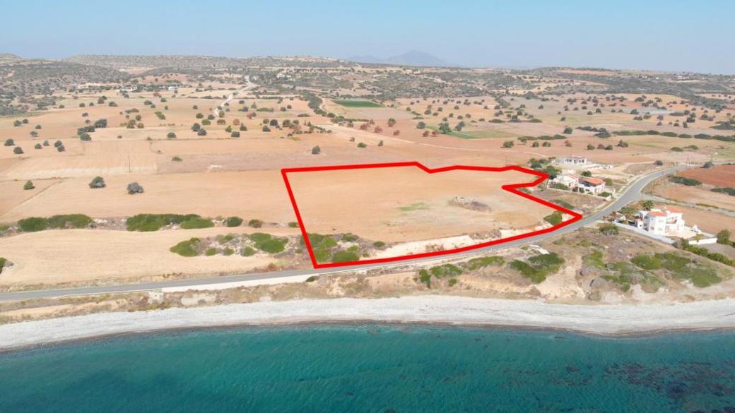 Field in Agios Theodoros, Larnaca
